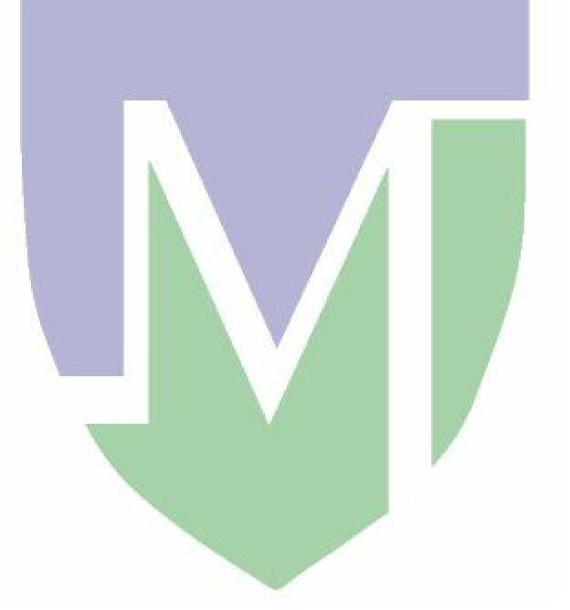 Martinos Imaging Center