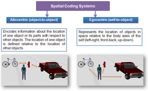 Spatial Coding Systems